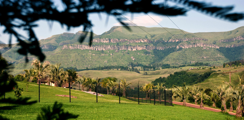 DGF Fencing throughout KZN